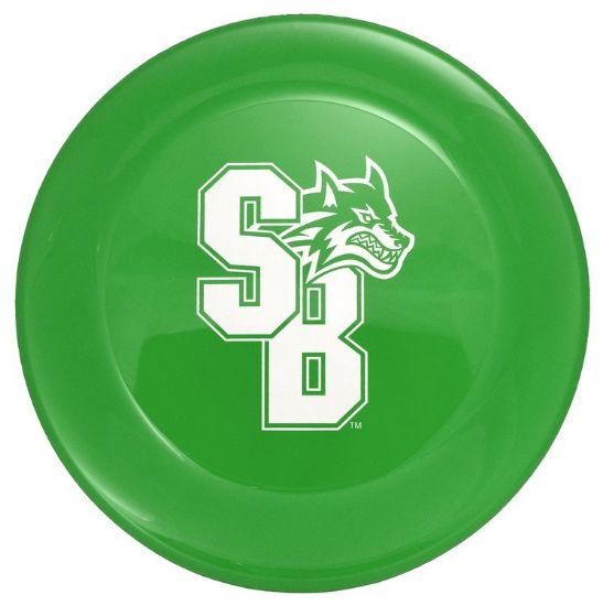 """Picture of 9\"""" Flyer Disc Frisbee"""