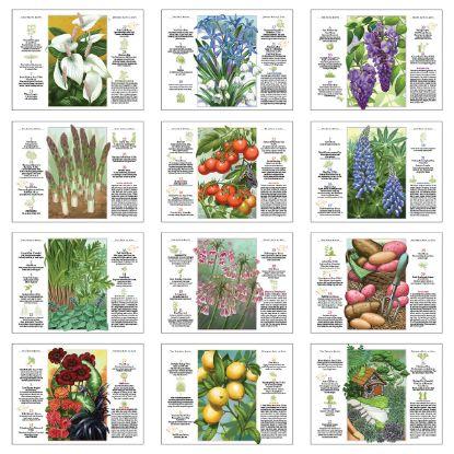 Picture of The Old Farmer\'s Almanac Gardening - Stapled Calendar